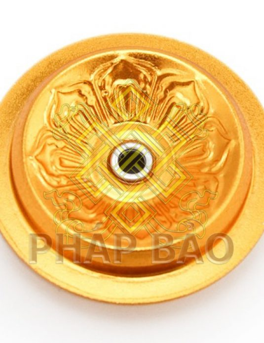 PHAO 5,5CM-2logo2